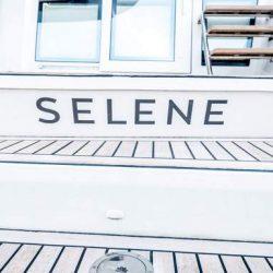 Selene Cockpit (1)