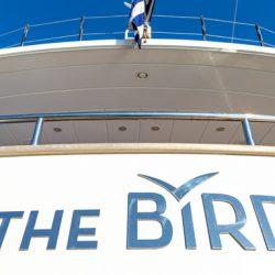 the-bird_42