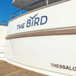 the-bird_43